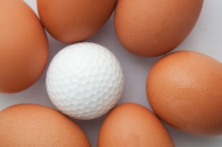 golf ball and fresh egg creative for sport idea  photo