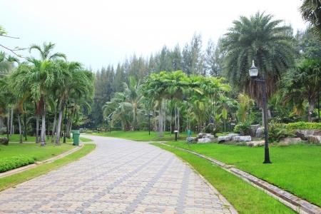 public park: caminando camino en parque p�blico