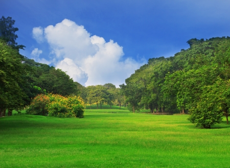 country club: view of the public park and clear blue sky white cloud Stock Photo