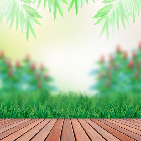 wood terrace and green garden background Stock Photo