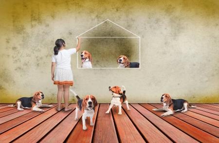 beagle dog and girl on wood terrace Stock Photo - 16118732