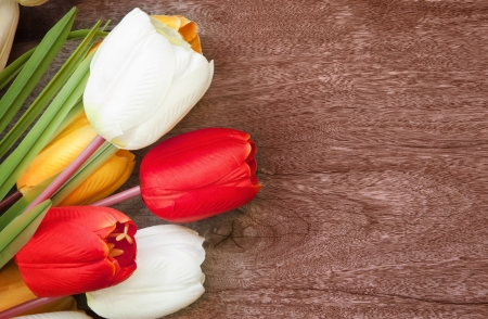 beautiful red tulips close up: tulip flower bouquet on weed texture background