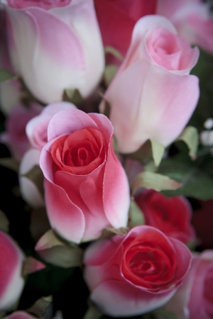 artificial of pink roses flower bouquet Stock Photo - 17162911
