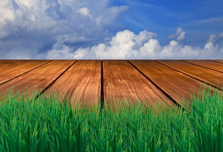 wood terrace with green grass fore ground sun blue sky background for multipurpose photo