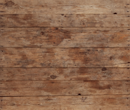 time table: bark wood pattern  for background or backdrop