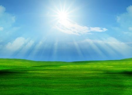푸른 하늘에 빛나는 아름다운 잔디 필드와 태양 순수한 자연 배경에 사용