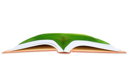 magical equipment: green grass field on open book use as multipurpose background