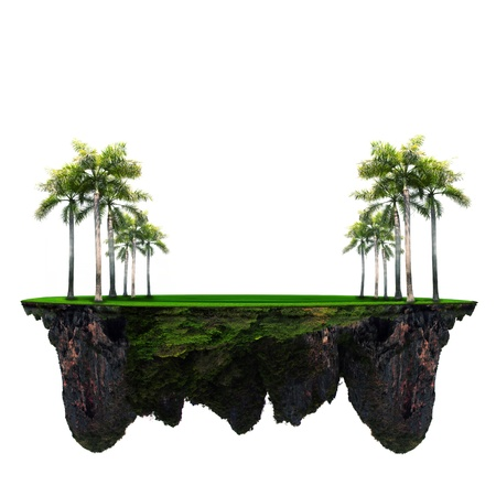 floating: palm tree on green grass with amazing rock underground