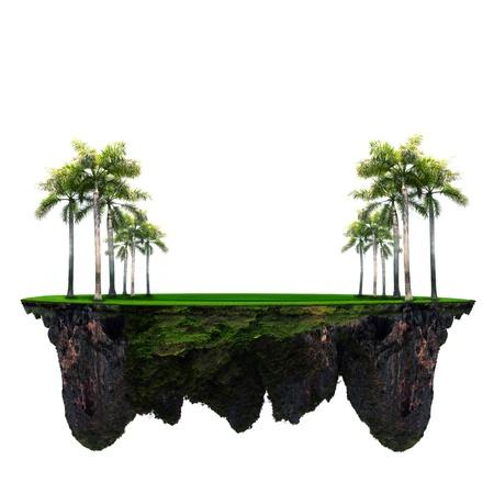 palmeira na grama verde com incr Imagens