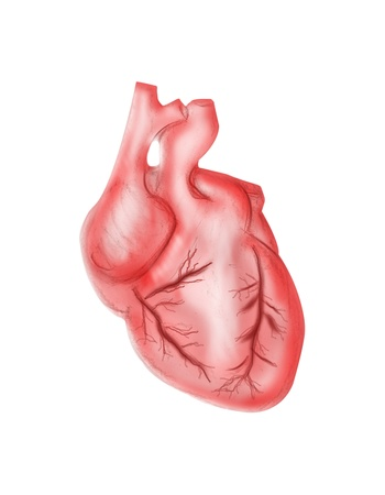 heartache: heart on white