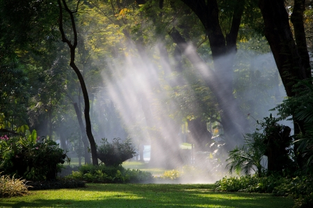 scrub grass: water sprau amd light in public park use for nature freshness in park and garden