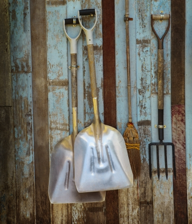 old farm: farm tool pitchfork and two shovels against old wooden wall use as rural farm scene