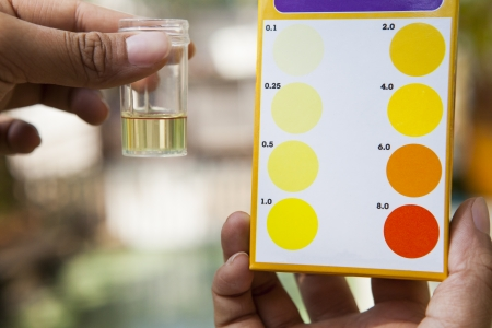 home maintenance: file hand holding chlorine  testing tube compared with cholrine color testing chart use for multipurpose science reserch and clean environment