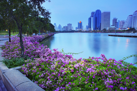 water scape: beautiful land scape  with magenta papers flowers and water pond of modern building  Stock Photo