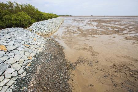 erosion: rock dam protection sea mangrove form natural sea storm damage for save environment Stock Photo