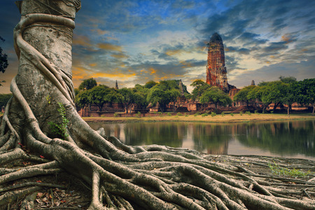 land scape: big root of banyan tree land scape of ancient and old  pagoda in history temple of Ayuthaya, central of thailand important destination of tourist
