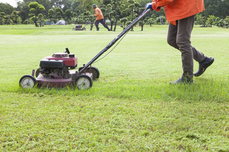worker cutting grass field with Lawn mower