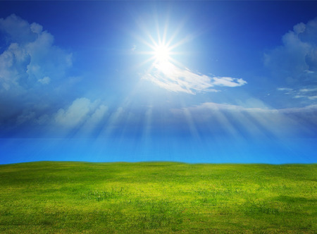 sky scape: beautiful green grass field with sun shine on clear blue sky