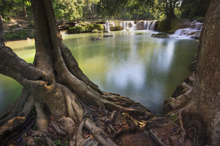 deep roots: beautiful tree root foreground and waterfalls in pure deep forest of thailand national park Stock Photo