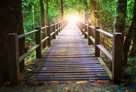 perspectief van houten brug in diep bos oversteken waterstroom en gloeiende licht aan het einde van de houten manieren