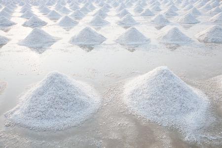 natural process: Heap of sea salt in original salt produce farm make from natural ocean salty water preparing for last process before sent it to industry consumer