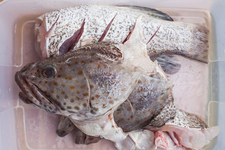 peice: meat of freshness grouper fish in sea food market preparing to cooking