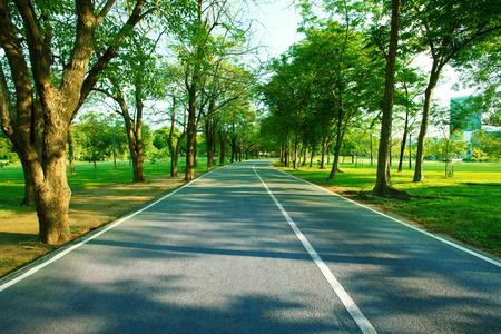 健康的な生活のための新鮮な良い環境の庭のための朝光の利用と緑の公共の公園で道を歩いてアスファルト
