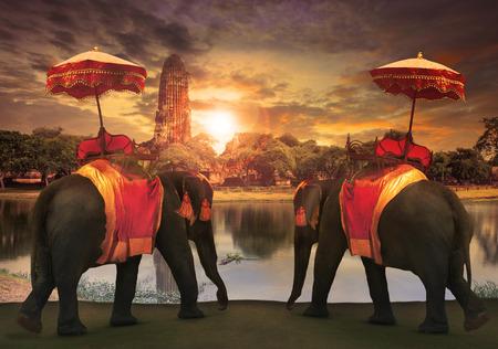 Elefanten-Dressing mit Thai-Königreich Tradition Zubehör stehen vor alten Pagode in Ayutthaya Weltkulturerbe Nutzung für den Tourismus und Mehrzweck-Hintergrund, Hintergrund Lizenzfreie Bilder