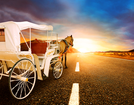 land scape: horse and classic fairy tale carriage on asphalt road perspective to beautiful land scape with sun rising sky