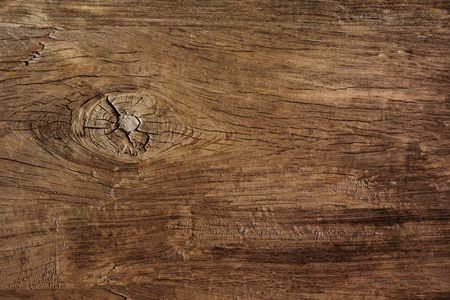 Textuur van de schors hout gebruik als natuurlijke achtergrond Stockfoto - 50101428