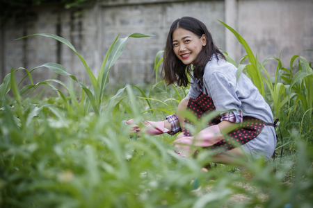 asian gardening: younger asian woman in home gardening ,hipster people lifestyle Stock Photo