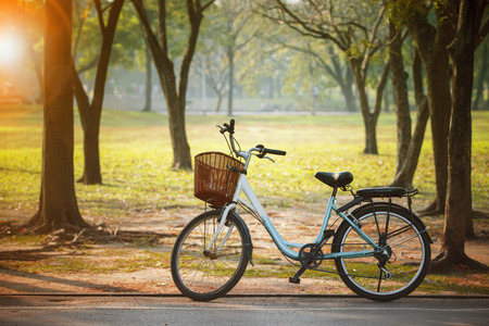 old vintage bicycle in public park with engergy save and green environmental concept Stock Photo - 65020483