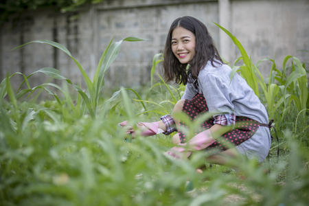 asian younger woman toothy smiling face happiness emotion in home gardening work Stock Photo