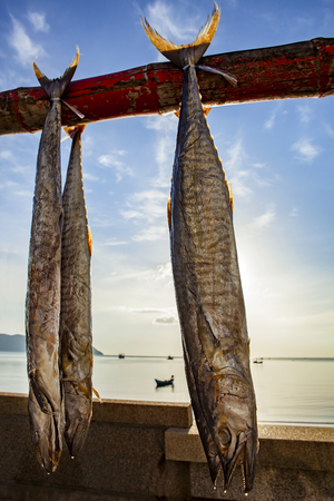 sun dry of mackerel fish in prachuap khiri khan southern of thailand Zdjęcie Seryjne