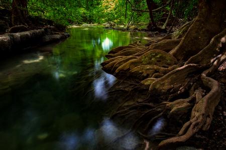 작은 연못과 arawan 물에 식물 뿌리 국립 공원, 깐 차나 부리 주, 태국 폭포 스톡 콘텐츠 - 84525805