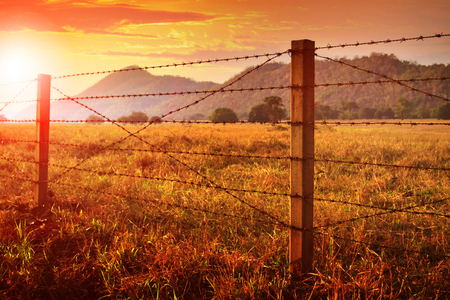 Barbed wire fence and and sunset sky over farm field