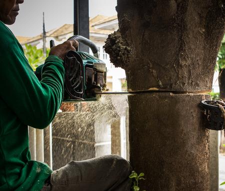 carpenter cutting bark tree by chain saw in gardening working