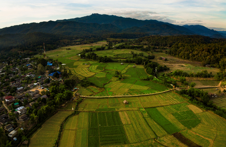 aerial view of agriculture field of zutong pe maehong sorn northern of thailand