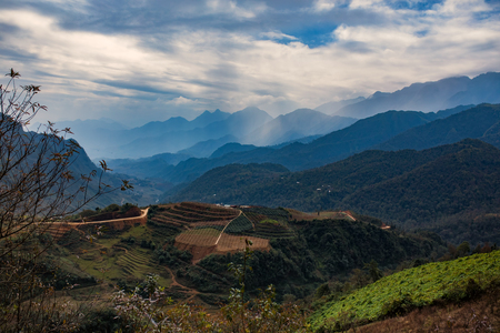beautiful scenic of rice terrace and agriculture plantation in sapa lao cai province northern of vietnam Stock Photo