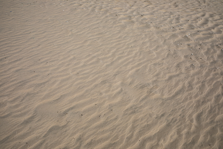 texture of natural sand beach use as background