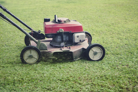 mowing moving on green grass field Stockfoto