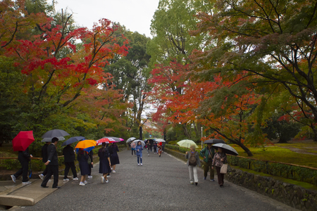 kyoto japan - november9,2018 group of tourist attraction to kinkakuji temple one of most popular traveling destination in kyoto japan