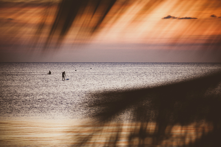 beautiful scene of vacation sea beach at sunset sky  looking through coconut leaves foreground