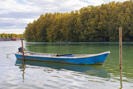 blue wooden boat floating over fresh water canal against beautiful mangrove forest in trad province eatern of thailand