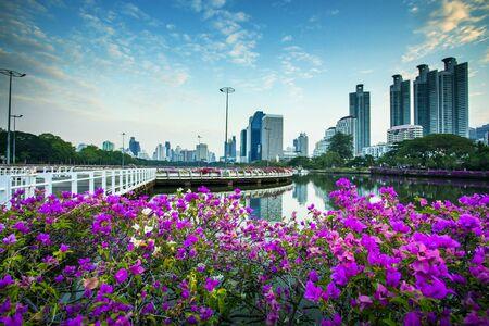 beautiful pink paper flower and bangkok skyscraper background Фото со стока