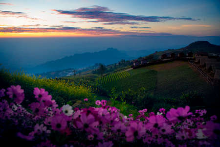 beautiful morning light phu tubberk one of most popular traveling destination in thailand