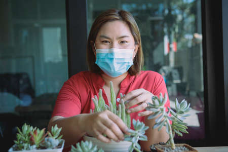 asian woman wearing protection mask planting cactus at home Stock fotó