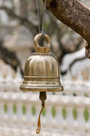reverberate: Brass bell hang by tree Stock Photo