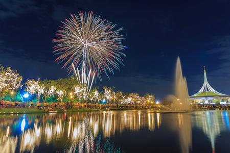 ix: Firework at King Rama IX Park Bangkok,Thailand