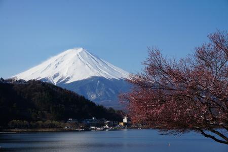 fuji san: Mt.Fuji